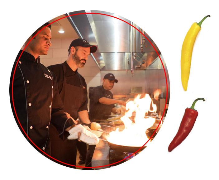 Vegetarian Indian Restaurant