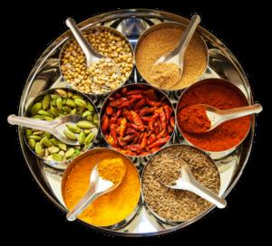 Vegan Indian restaurant